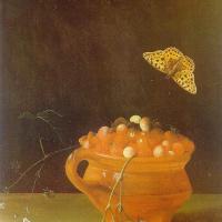 Адриан Коорт (Коорте). Бабочка и горшок с клубникой