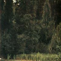 The alyonushkin pond ( Pond in Okhtyrka )