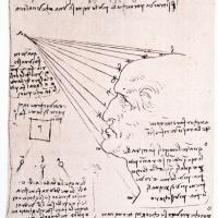Леонардо да Винчи. Изучение влияния света