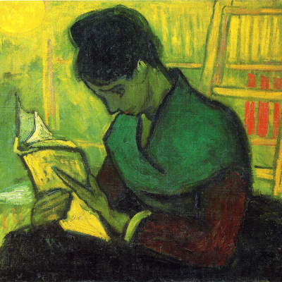 The reader of the novel