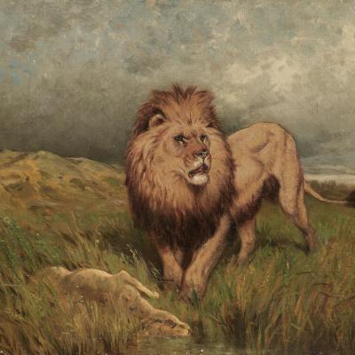 Убийца: лев и его добыча