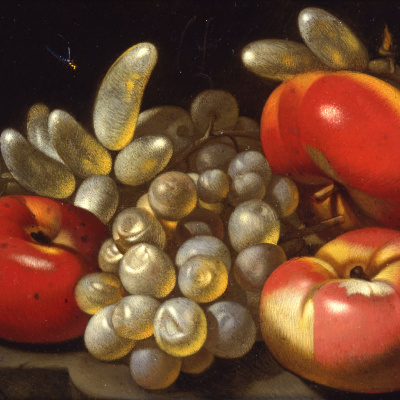 Still Life with Apples, Grapes and a Dragonfly