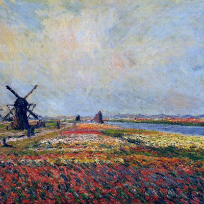 Field of tulips and windmill near Leyden