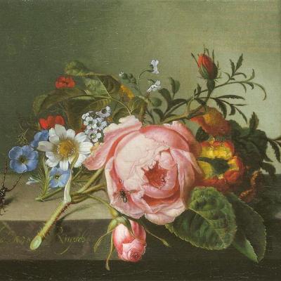 Ветка розы с жуком и пчелой