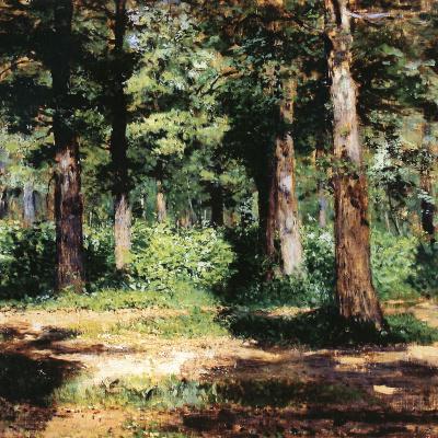 Лес. Солнечный день