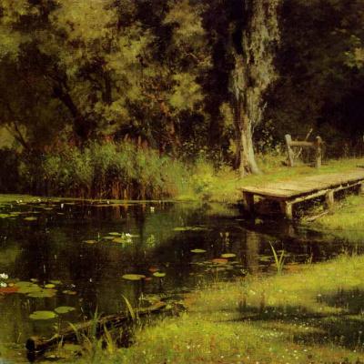 Overgrown pond