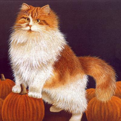Cats. October 94