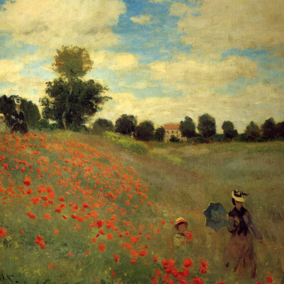 Field of poppies at Argentia