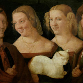 Four laughing man with a cat