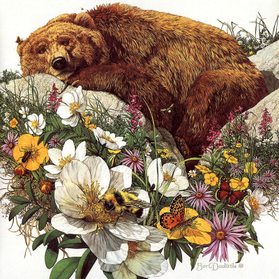 Бев Дулитл. Наблюдающий медведь