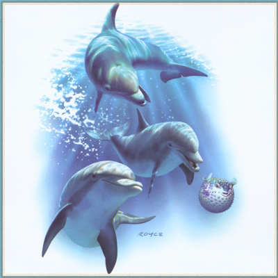 Ройс Макклюр. Дельфины 16