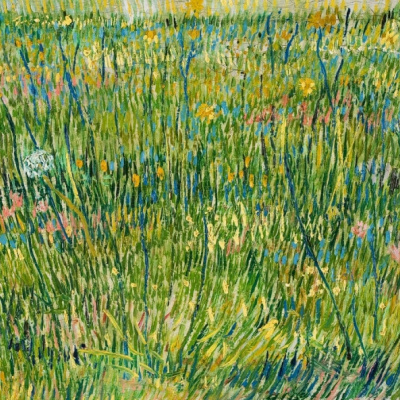 Лоскут травы