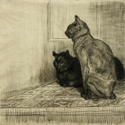 Кошки, устроившиеся на комоде