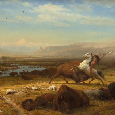 Последний из бизонов (Последний из Буффало)