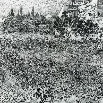 Сад в Провансе