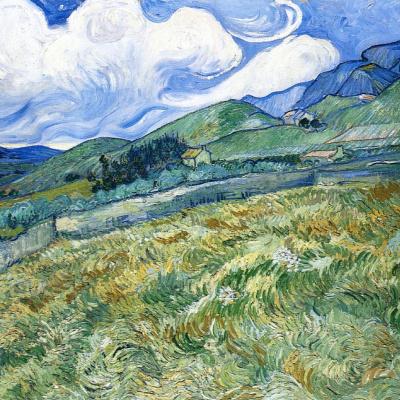 Пшеничное поле с горами на заднем плане