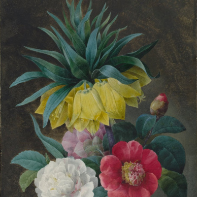 Four peonies and the imperial crown