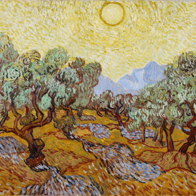 Olive trees under a yellow sky, and the November sun