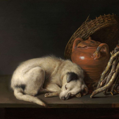 Sleeping dog and a clay pot
