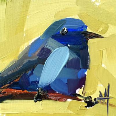 Angela Moulton. Blue licenced