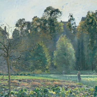The cabbage field. PONTOISE