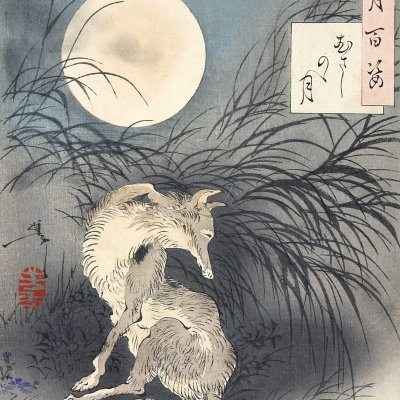 "The Fox under the magic moon valley Musashi. The series ""100 aspects of the moon"""
