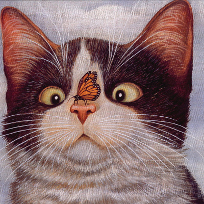 Коты. Июнь 94