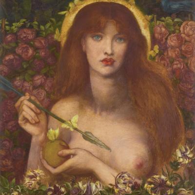 Венера Вертикордия