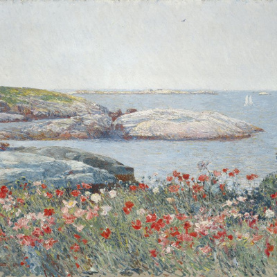 Poppies, island of shoals