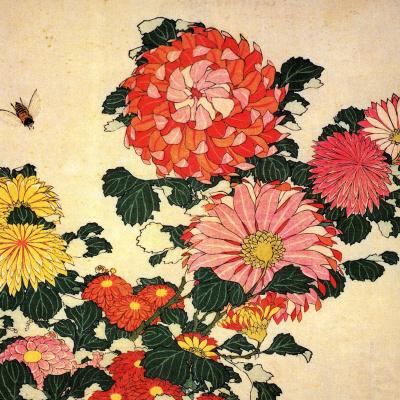 Хризантемы и пчела
