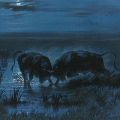 Battle in the moonlight
