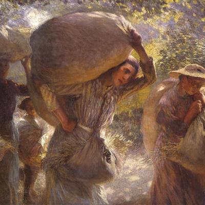 Сборщики зерна возвращаются домой