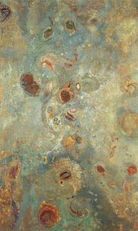 Подводный вид