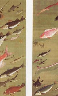 Осьминог и рыбы