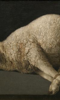 The lamb of God (Agnus Dei)