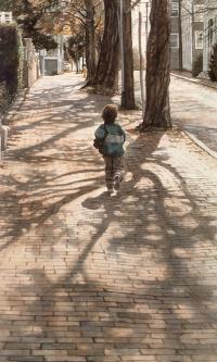 Тени деревьев