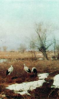 The beginning of spring. 1895