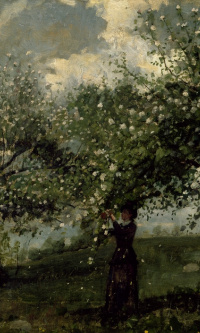 Girl collecting flowers from a tree