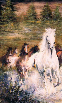 Horses jumping in the Creek