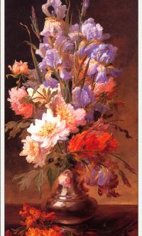 Ирис и розы