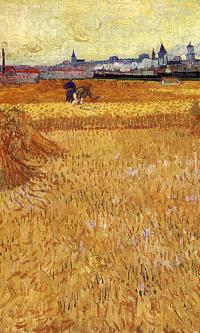 Арль: вид с пшеничных полей