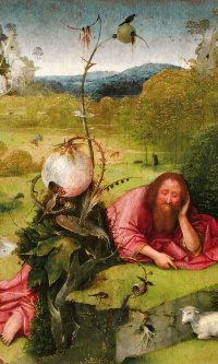 St. John the Baptist in the wilderness