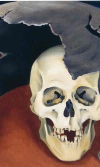 Человеческий череп в разбитом горшке