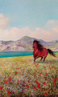 On distant meadows