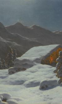Winter landscape in the moonlight