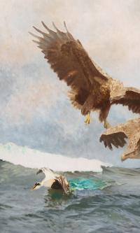 Охота орланов
