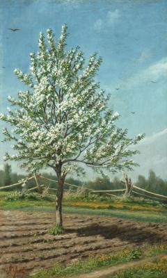 Vasily Grigorievich Perov. Apple tree in bloom